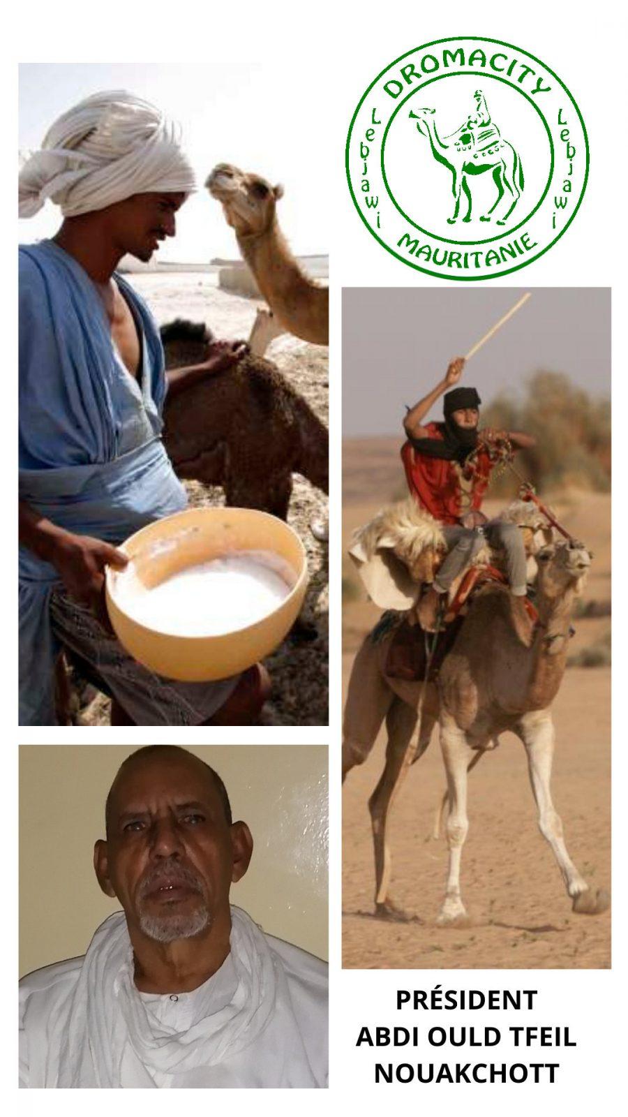 Mauritanie DromaCity