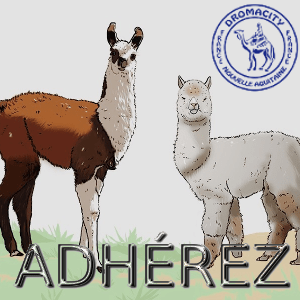 Adherez-a-Dromacity france 300x300