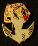 Les insignes sahariennes Dromadaire 11