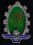 Les insignes sahariennes Dromadaire 2