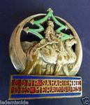 Les insignes sahariennes Dromadaire 35