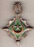 Les insignes sahariennes Dromadaire 36