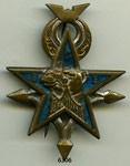 Les insignes sahariennes Dromadaire 38