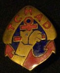 Les insignes sahariennes Dromadaire 8
