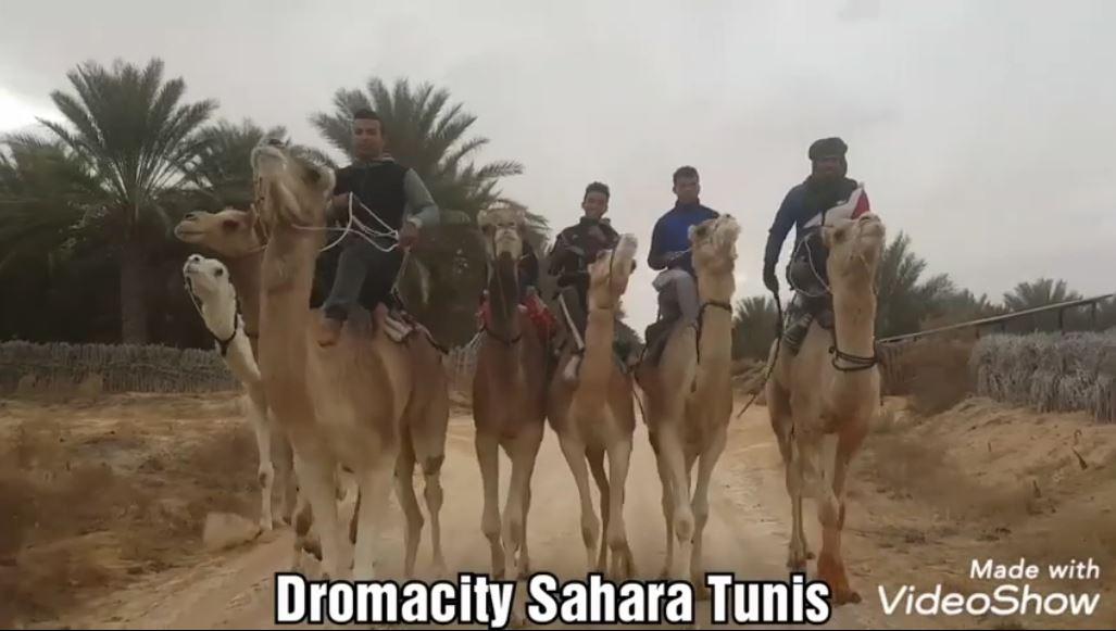 L'Equipe de jockeys de DromaCity Tunisie et ses dromadaires