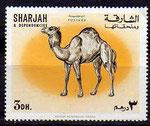 timbre dromadaires 48