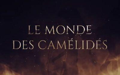 Le Monde merveilleux des Camélidés