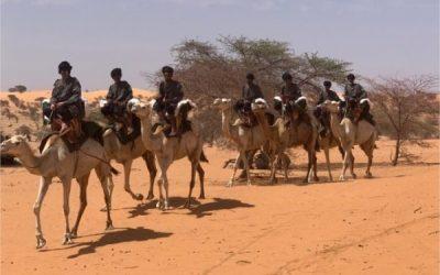 Mauritanie: l'UE a financé l'achat de chameaux pour le groupement nomade