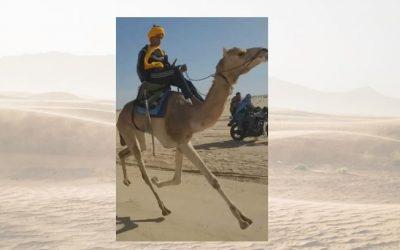 Marzoug Ben Aoun jockey de l'équipe DromaCity et son dromadaire Boulboul