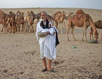 Les hommes du désert, dans les pas des chameliers du Sahara