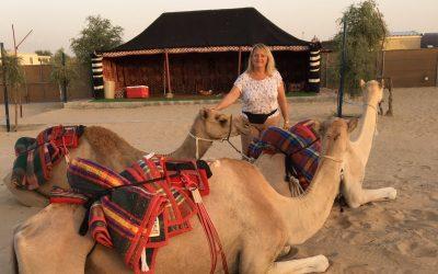 Interview de Viviane Paturel-Mazot et ses dromadaires de thecamelfarmdubai