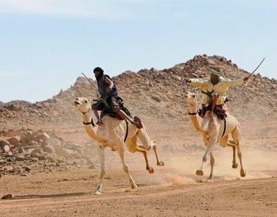 Compétitions de dromadaires à Tamanrasset le 14 août 2021
